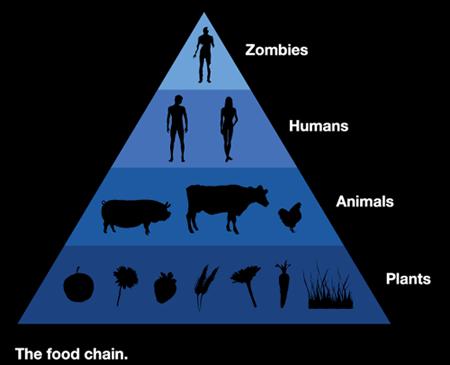 La cadena alimenticia