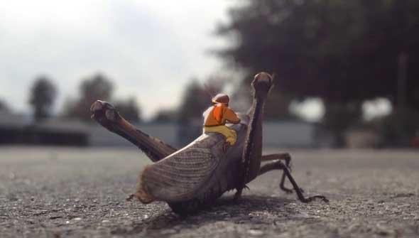 Grasshopper Aviation, un pequeño corto de animación
