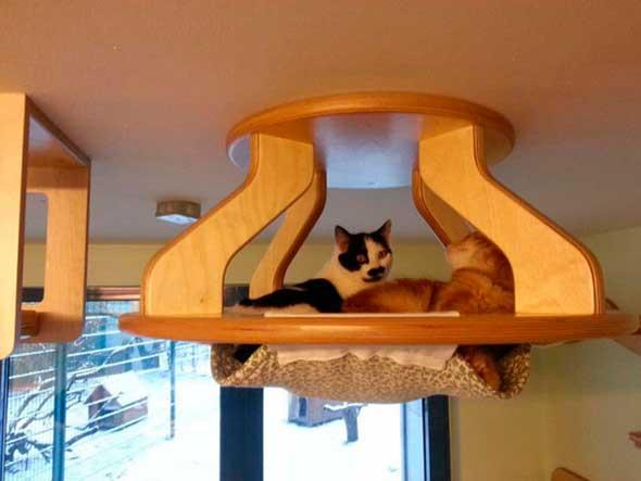 juguetes-y-muebles-modulares-para-gatos-para-paredes-y-techos-8