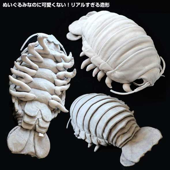 Peluche realista de isópodo gigante