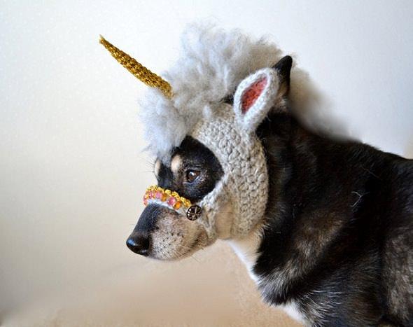 Máscara de unicornio para perro