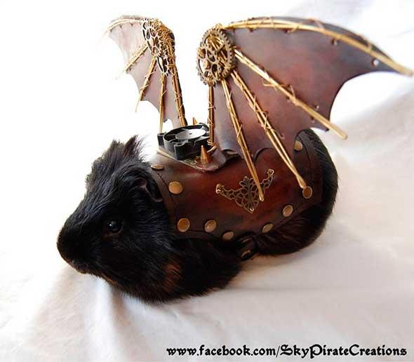 Todo conejillo de Indias necesita unas alas de cuero Steampunk